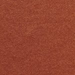 Copper Penny Color Swatch